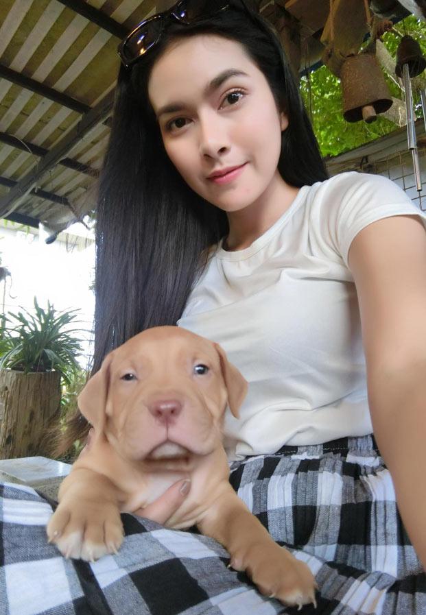 pattchaai&dog